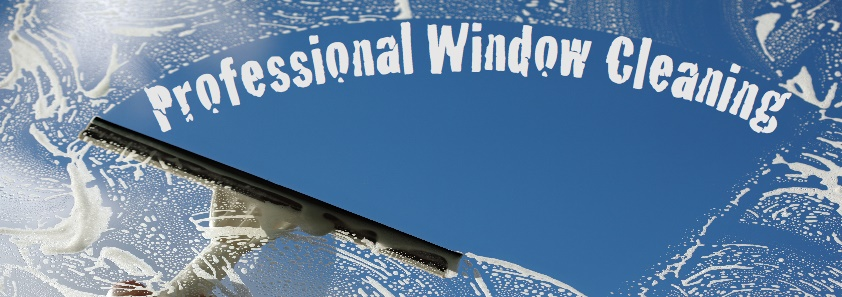 Window Washing, Window Cleaning Service, Frankfort IL, Mokena IL, New Lenox IL, Orland Park IL, Tiinley Park IL, Washer Guys, Home Improvement, Gutter Cleaning Service, Window Screen  Cleaning